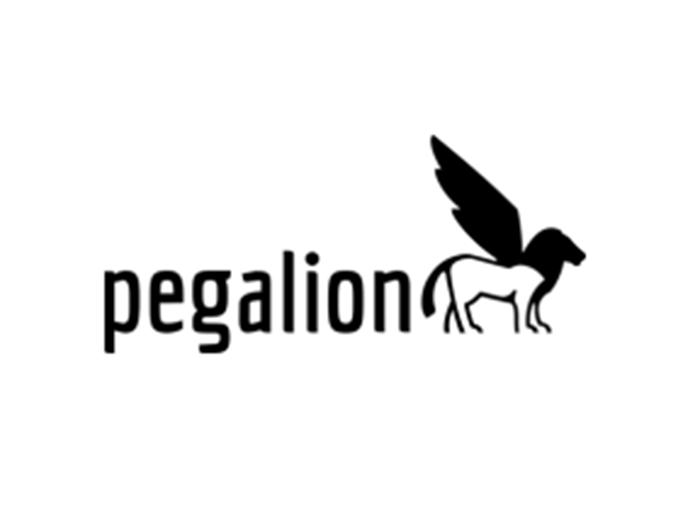 gdh_mitglieder_pegalion